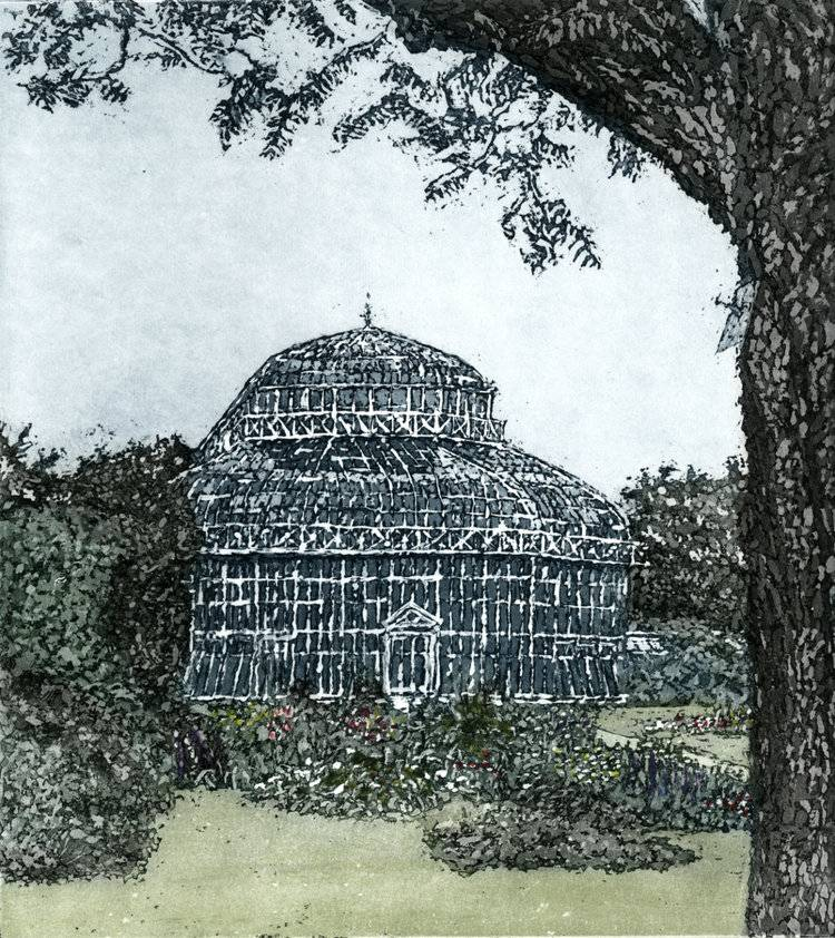 Susan Early, Palm House Etching and Aquatint Image size- 20 x 18cm Paper size- 41 x 35cm