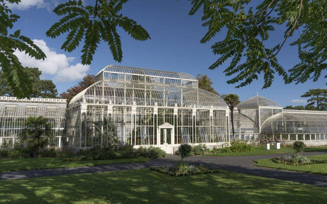 Vacancy – Curator at the National Botanic Gardens of Ireland