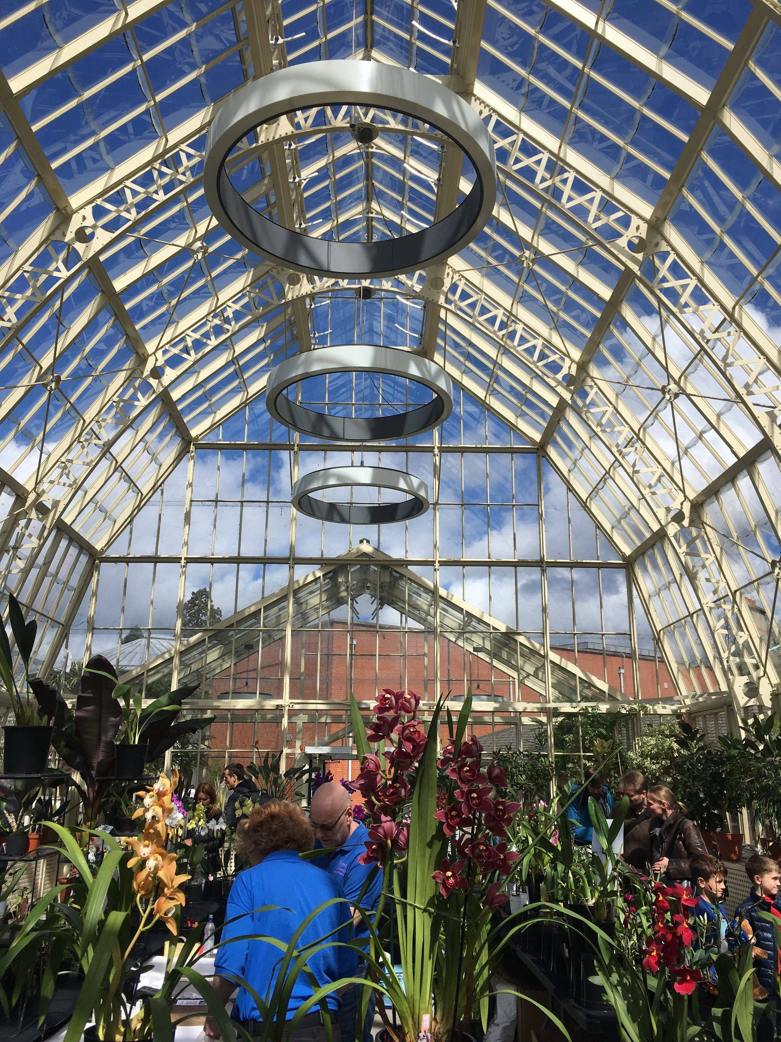 Orchid Fair Cancelled National Botanic Gardens Of Ireland The