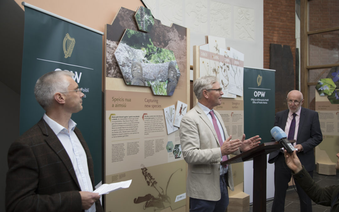 Herbarium in Focus – Exhibition brings to life the power of plants