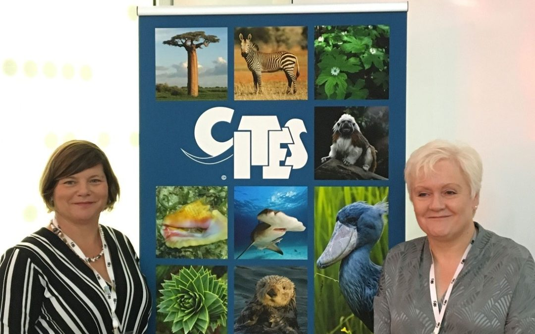 Plant News from the 18th World Wildlife Conference