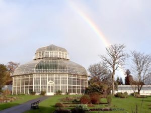 Daily Guided Tour Glasnevin @ National Botanic Gardens, Glasnevin