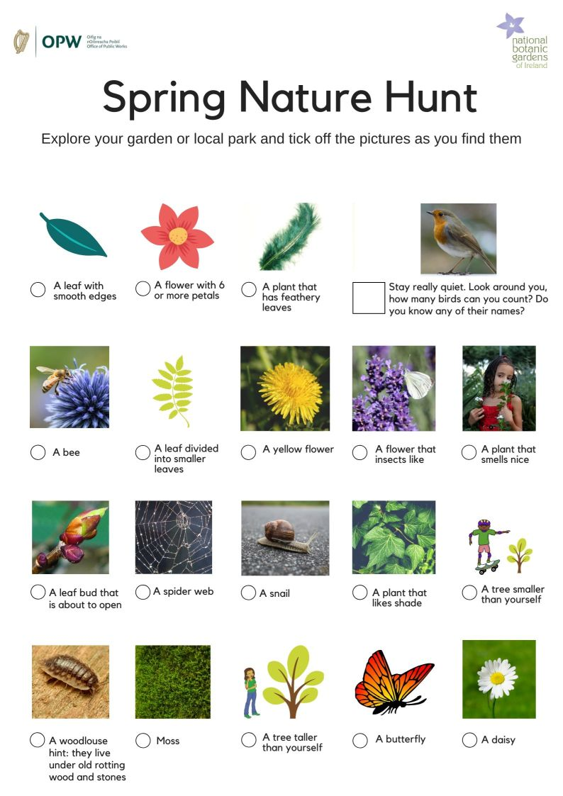 preview image of botanic gardens of ireland spring nature hunt worksheet