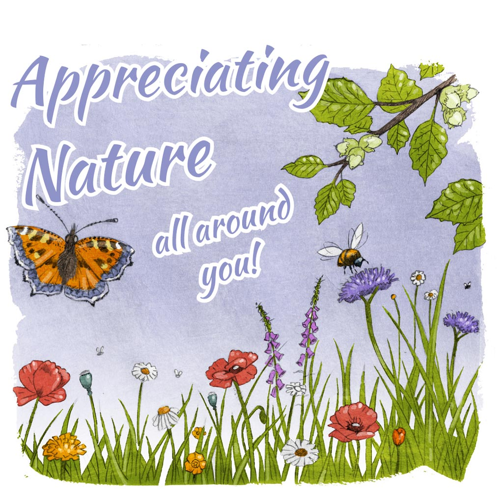 Illustration for Appreciating Nature all around you with wildflowers insects hazel and grass