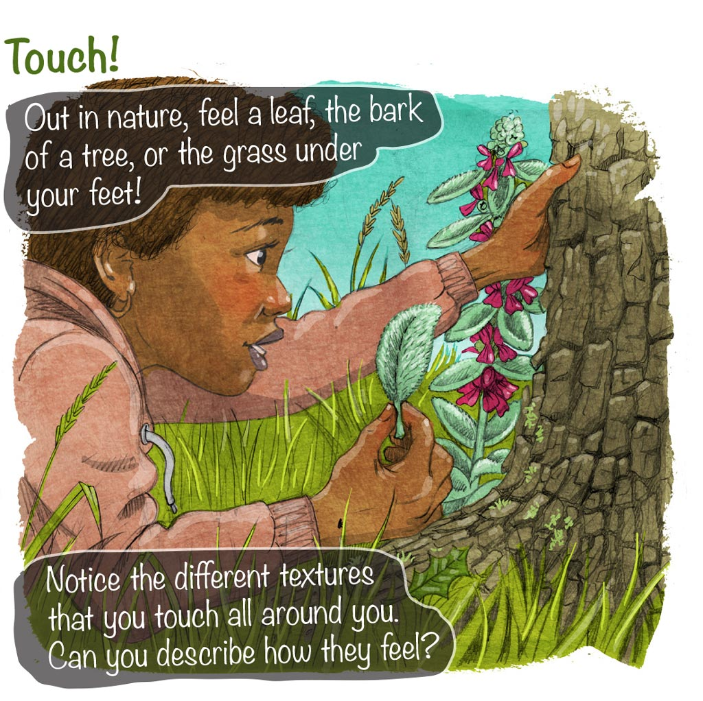 illustration of girl out in nature touching differently textured plants and barks