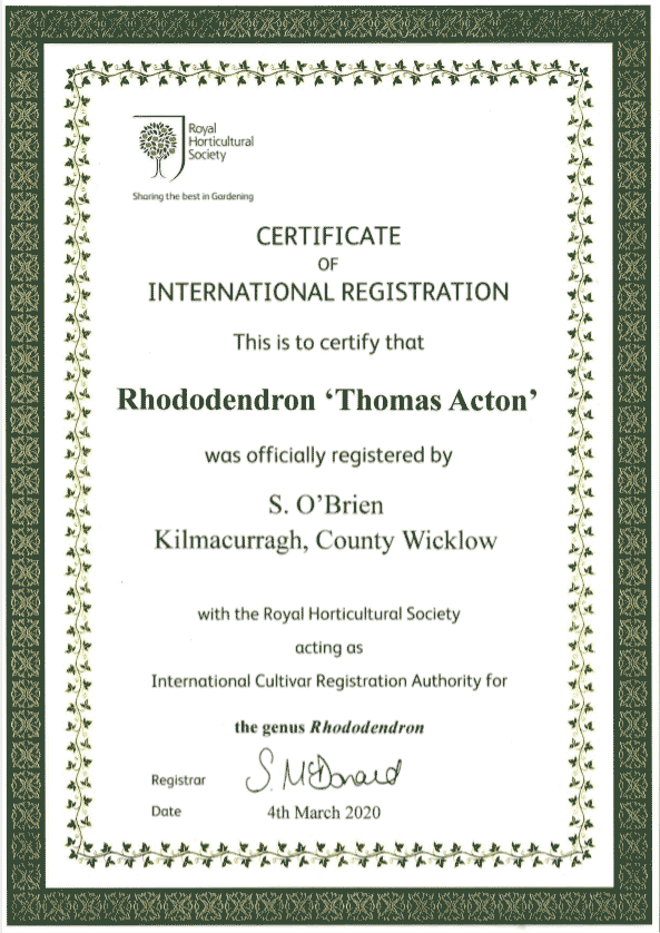 thomas acton registration certificate rhs