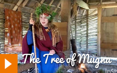 Tales from the Viking House: The Tree of Mugna