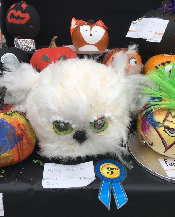 pumpkin competition entry