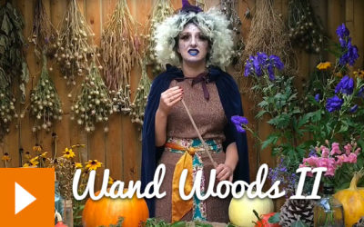 Magical Plants in the Witches' Garden: Wand Woods II